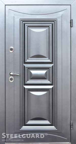 Вхідні двері Steelguard Termoskin