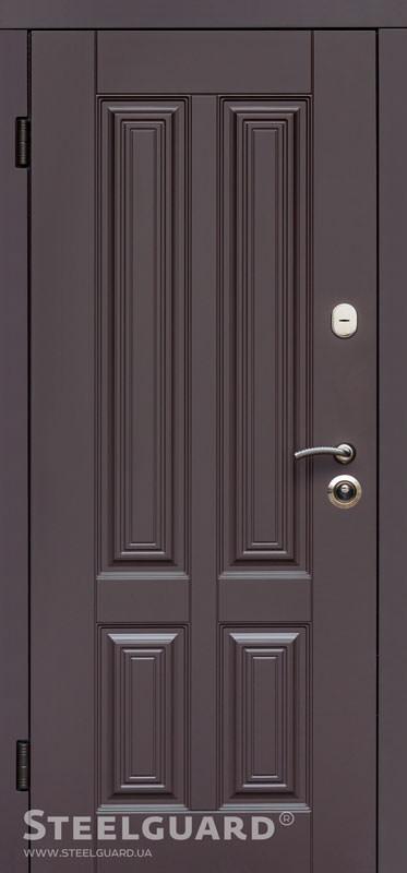 Вхідні двері Steelguard Balta купити