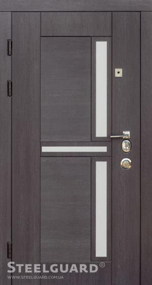 Вхідні двері Steelguard Neoline